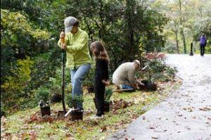 Burbanck Park Clean-Up