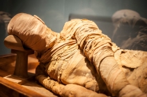 Old Kingdom mummy rests in the Egyptian collection.