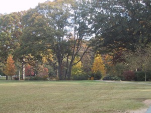 Fall in Olmsted Linear Park (photo by Jennifer J. Richardson)